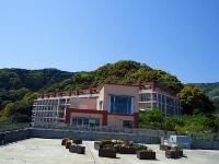 社会福祉法人湖成会 熱海伊豆海の郷・求人番号425075