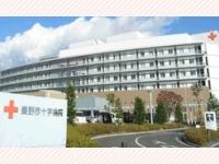 日本赤十字社 秦野赤十字病院・求人番号256347