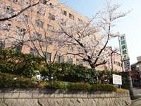 医療法人 枚岡病院・求人番号309153