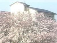 医療法人社団大阪昌栄会 坂根病院・求人番号547248