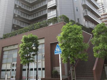 かわさき大宮町保育園(認可)