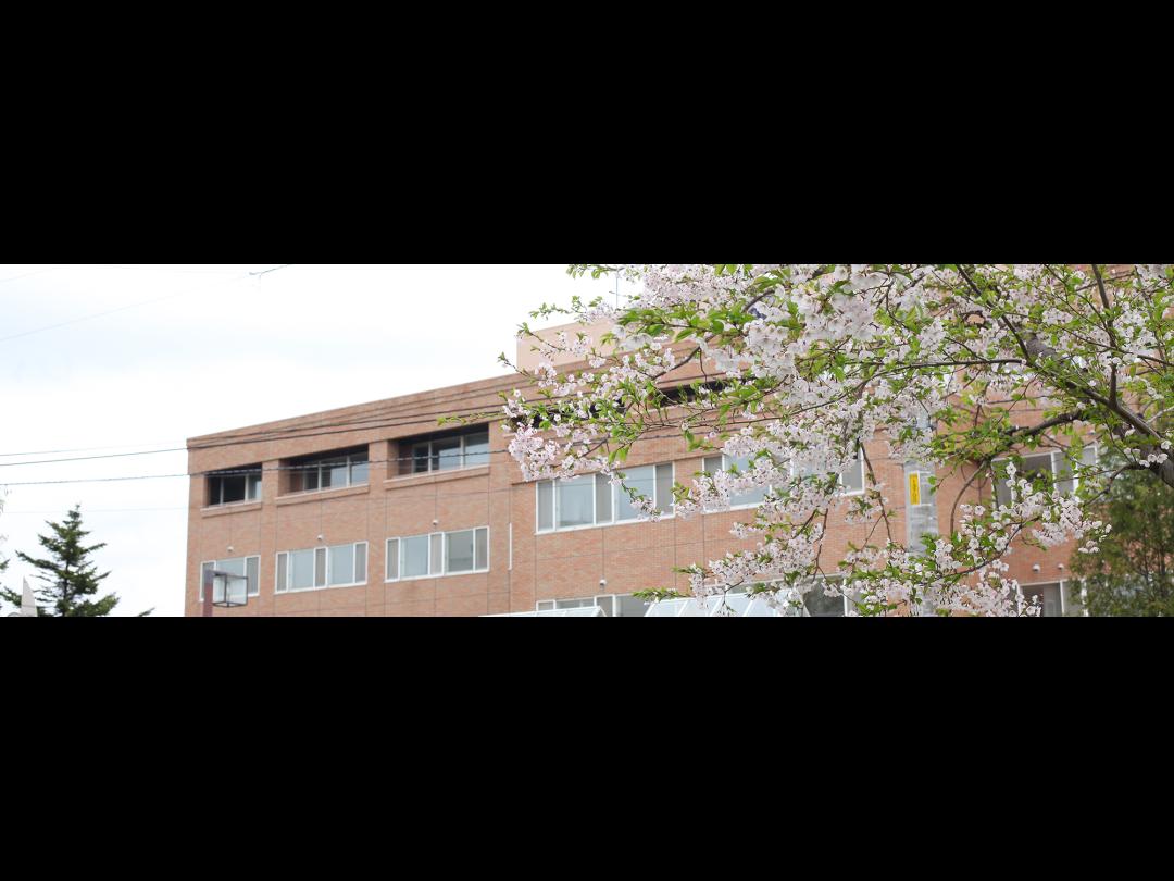 医療法人社団同仁会 長野病院 【訪問看護/デイケアセンター】・求人番号701277